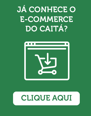 blog_caita_ecommerce_lateral
